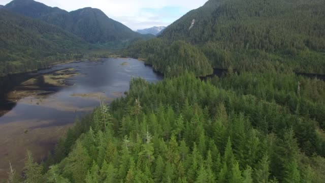 Aerial: Large River In Between Forest Covered Mountains