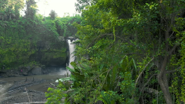 aerial left: rocky waterfall in forest, mossy cliff - jatiluwih rice terrace, bali - mud stock videos & royalty-free footage