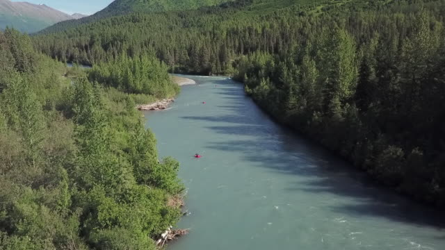 vídeos de stock e filmes b-roll de aerial lockdown: drifting in the river of alaska - parque natural