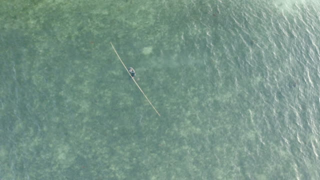 aerial lockdown shot of man with pole in turquoise sea, drone flying over person in rippled water - ko pha ngan, thailand - transparent stock videos & royalty-free footage