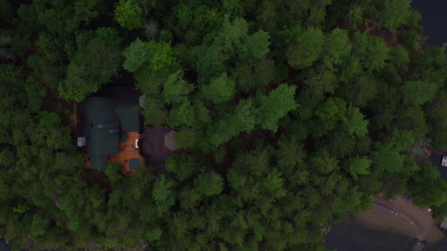 Aerial looking directly down flying over small island in Saranac lake, late afternoon