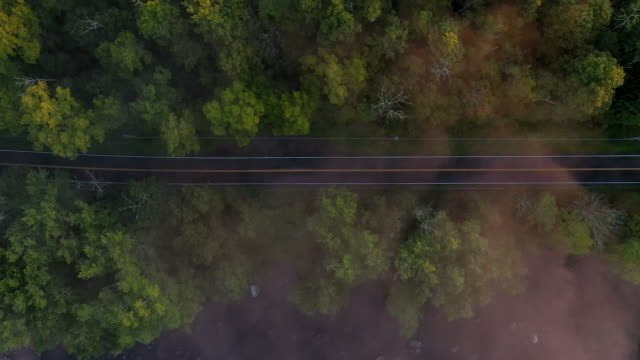 aerial looking directly down on country road covered in low fog at sunrise - ニューパルツ点の映像素材/bロール