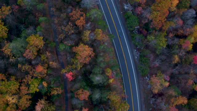 aerial looking directly down on road with car in the mountains, beautiful leaf colors on trees - ulster county stock videos & royalty-free footage