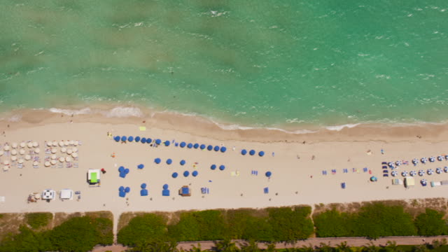 aerial looking directly down on south beach, miami fl - beach umbrella stock videos and b-roll footage