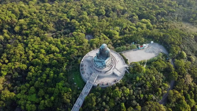 aerial: looking down onto a forest of trees with tian tan buddha statue - tian tan buddha stock videos and b-roll footage