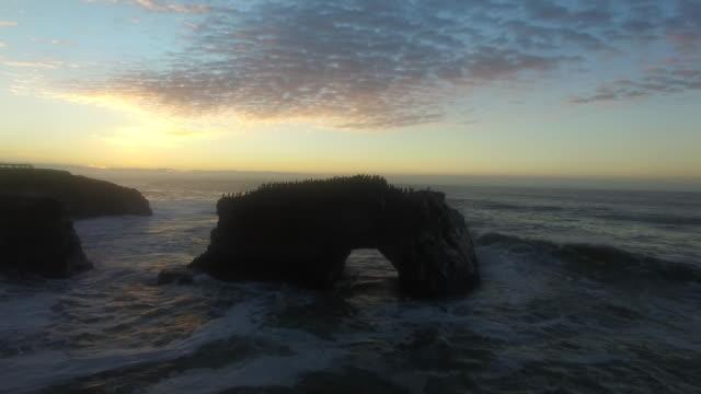 aerial low hover close up: 4k uhd sunrise at natural bridges sb - カリフォルニア州サンタクルーズ点の映像素材/bロール