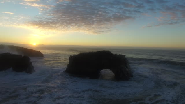 aerial low hover pan left: 4k uhd sunrise at natural bridges sb - santa cruz california stock videos and b-roll footage