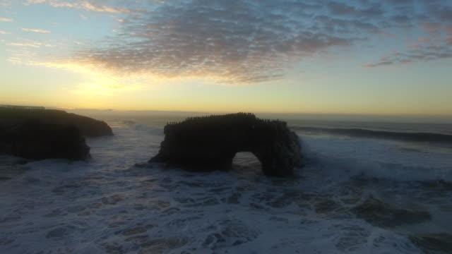 stockvideo's en b-roll-footage met aerial low reverse rise surf: 4k uhd sunrise at natural bridges sb - santa cruz californië