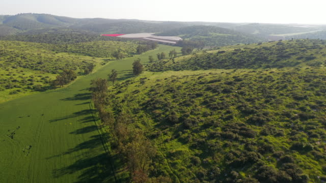 vidéos et rushes de aerial: lush countryside and helicopter landing site - lachish, israel - vallée