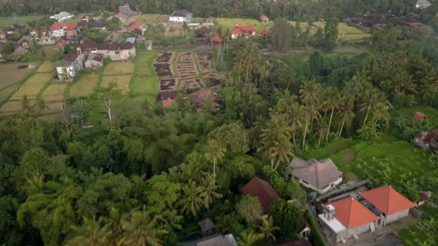 aerial: lush green tropical town on a cloudy day - ubud stock videos & royalty-free footage