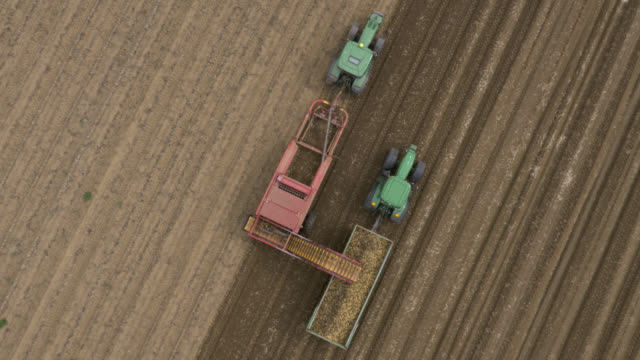 aerial machinery harvests potato crop, uk - potato stock videos and b-roll footage