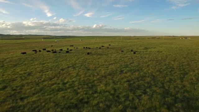 aerial montana landschaft - argentinien stock-videos und b-roll-filmmaterial