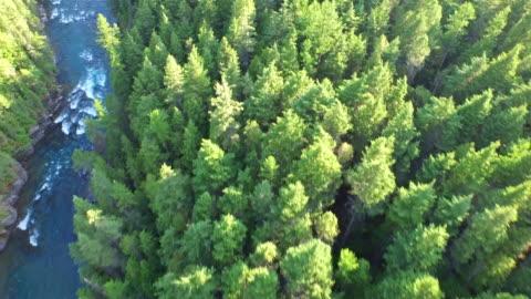 aerial montana glacier national park - river stock videos & royalty-free footage