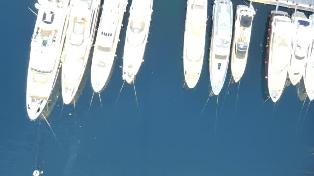 aerial monte carlo sunrise yacht marina harbor travel - monaco stock videos & royalty-free footage