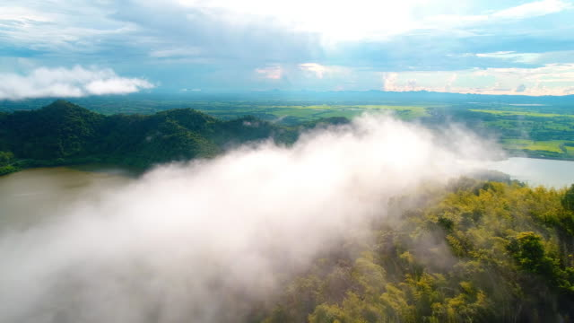 aerial morning mist at tropical mountain - zona arborea video stock e b–roll