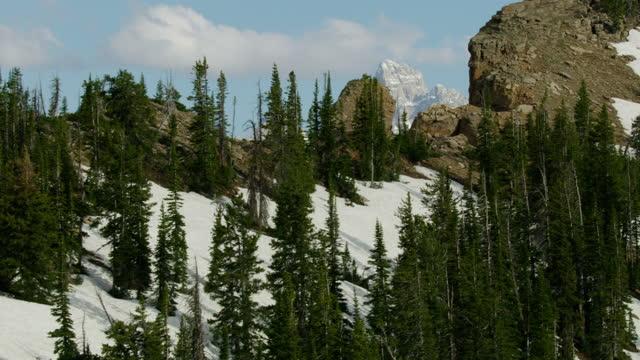aerial mount moran grand teton mountain range usa - mt moran stock videos & royalty-free footage
