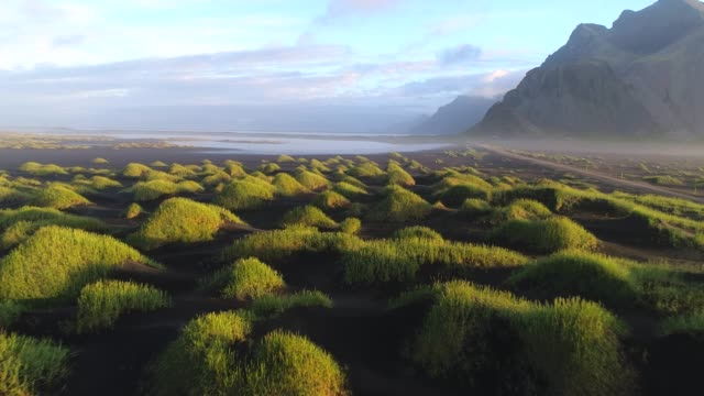 4k aerial movie summer scene of black beach sand and mountain vestrahorn in hofn, iceland - avventura video stock e b–roll