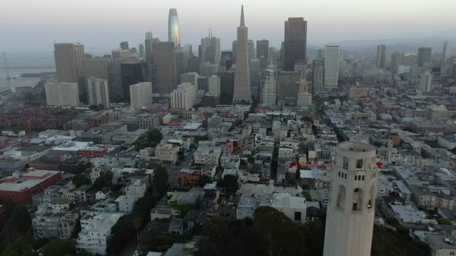 aerial moving in reverse from downtown to telegraph hill with a slight tilt down to reveal coit tower at telegraph hill against a calming horizon of purple haze and a gently setting sun - san francisco, california - rainforest stock videos & royalty-free footage