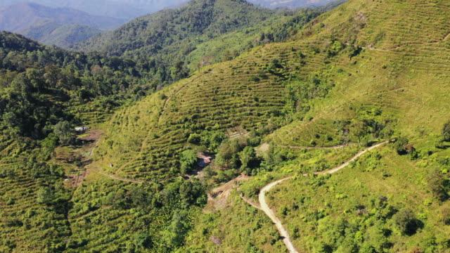 aerial: narrow path on green mountain in green landscape in pai, thailand - pai, thailand - 熱帯の木点の映像素材/bロール