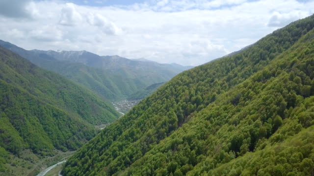 aerial /natural forests of the caucasus mountains in spring - caucasus stock videos and b-roll footage