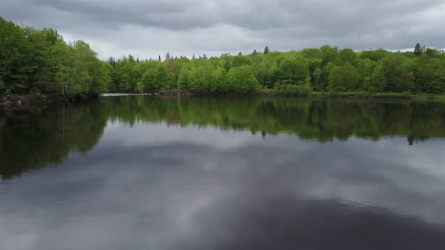 aerial nature landscape flying over river on cloudy day - loch stock videos & royalty-free footage