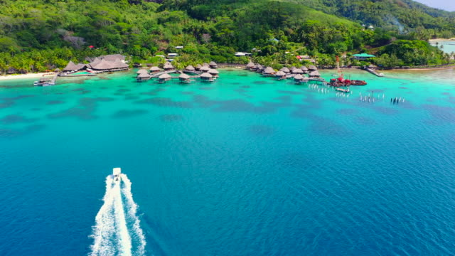 aerial of a boat moving on the water of a stunning blue lagoon towards a beautiful tropical island, drone flying forward and passing over the boat while ascending - bora bora, french polynesia - bora bora stock videos & royalty-free footage