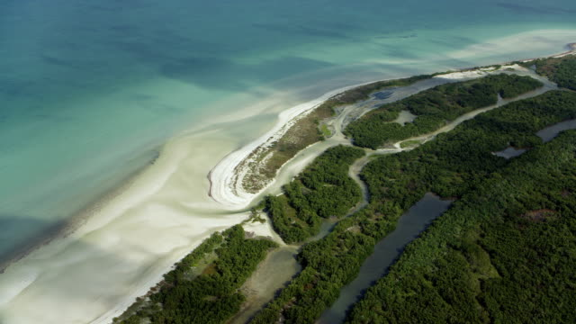 aerial of beach on yucatan coastline - golfo del messico video stock e b–roll