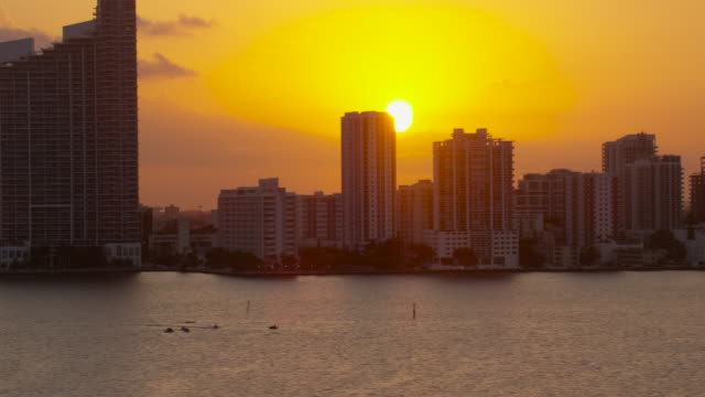 aerial of buildings in downtown miami at sunset florida - miami video stock e b–roll