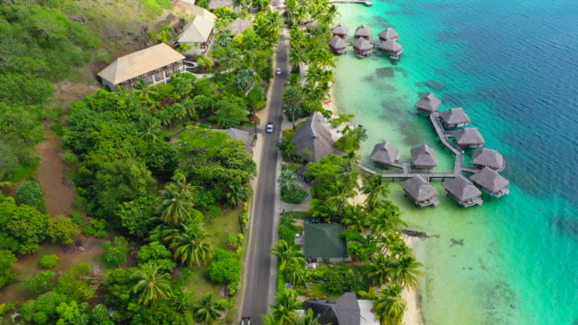 vidéos et rushes de aerial of cars driving on a coastal road on a beautiful tropical island, drone flying forward along the road - bora bora, french polynesia - bora bora