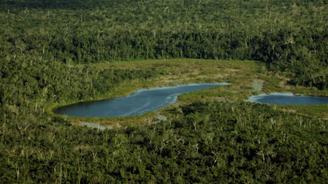 vídeos de stock, filmes e b-roll de aerial of cenotes in mexico's yucatan - yucatán