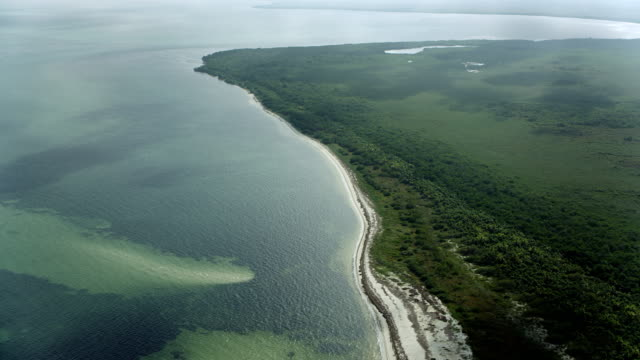 aerial of coastal landscape in mexico - quintana roo stock videos and b-roll footage