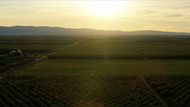 aerial of crops fields sun flare sunset usa - northern california stock videos & royalty-free footage
