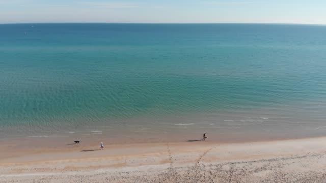 vidéos et rushes de 4k aerial of dromana beach, mornington peninsula - idyllic