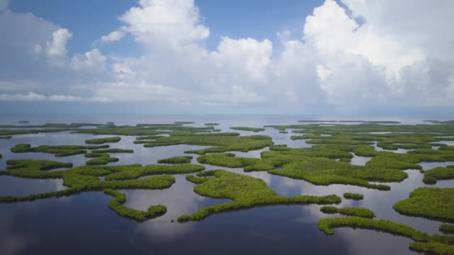 vidéos et rushes de aerial of everglades islands, clouds reflected in water - marécage