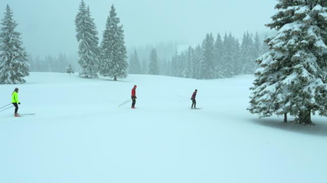 vídeos de stock, filmes e b-roll de vista aérea da família durante neve de esqui cross-country - três pessoas