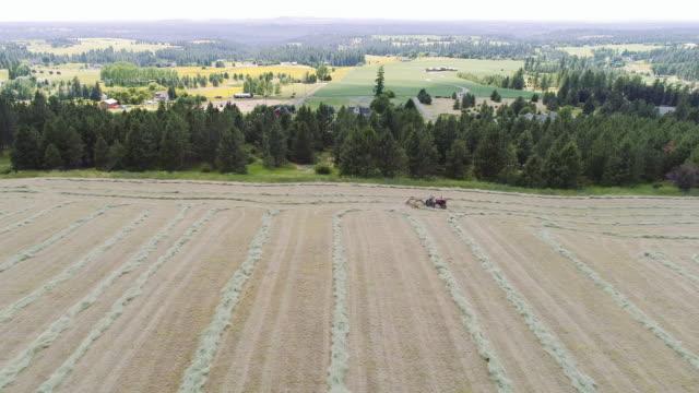 aerial of farmer raking hay into lines - bailing hay stock videos & royalty-free footage