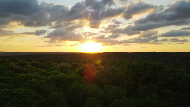aerial of forest at sunset, 4k nature/wildlife/weather, aerial ecological forest sunset beautiful shot. ideal background for forest conservation, save biology and nature, ecology theme. global warming and forest fire theme, aerial sunset background - wildlife conservation stock videos & royalty-free footage