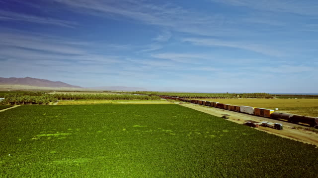 ws aerial of freight train from mexico crossing through imperial county produce farm on its way to los angeles - インペリアルバレー点の映像素材/bロール