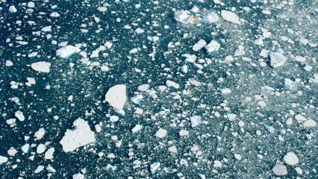 aerial of greenland arctic glacier and icebergs - melting stock-videos und b-roll-filmmaterial