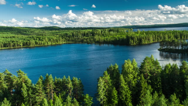 aerial of landscape with lakes and forest in sweden - taiga stock videos and b-roll footage