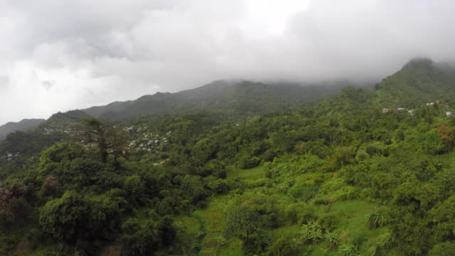 aerial of mist and clouds above a jungle / grenada, carribbean - caribbean stock videos and b-roll footage