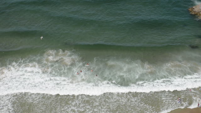 Aerial of people swimming in sea, Cornwall.
