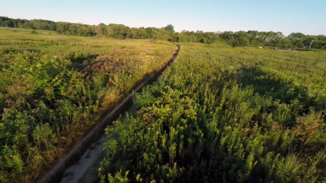 aerial of prairie & dirt road, nice light - prairie stock videos and b-roll footage