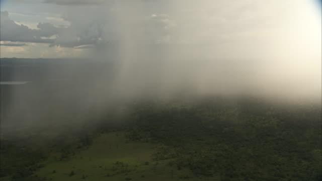 aerial of rain falling onto woodland savannah, uganda - fog stock videos & royalty-free footage
