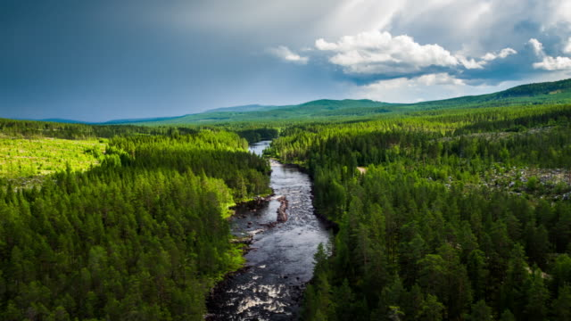 aerial of river in boreal forest - scandinavia - boreal forest stock videos & royalty-free footage