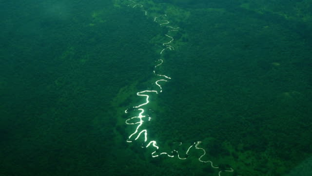 aerial of river running through central african repulic - river bend land feature stock videos & royalty-free footage
