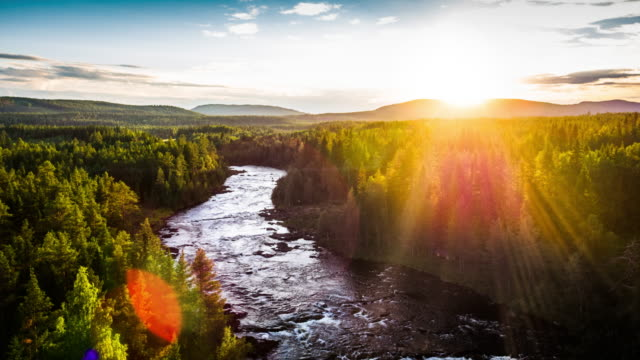 Aerial of river surrounded by boreal forest in back light - 4K Cityscapes, Landscapes & Establishers