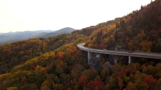 aerial of road through forest - ridge stock videos & royalty-free footage