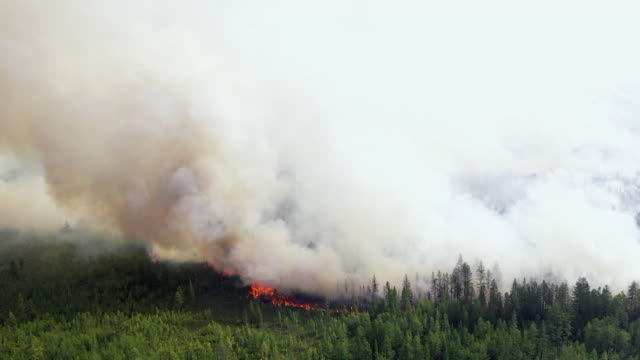 aerial of smoke and flames from forest fires burning in yakutia region of siberia, along the arctic circle, releasing record amounts of greenhouse... - arctic stock videos & royalty-free footage