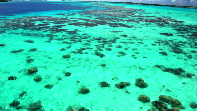 aerial of turquoise lagoon coral reef south pacific - polynesian ethnicity stock videos & royalty-free footage